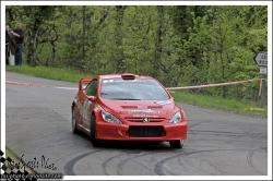 Dijon  2013 GROHENS JEAN PAUL / MARTIN CHRISTOPHE 307 WRC